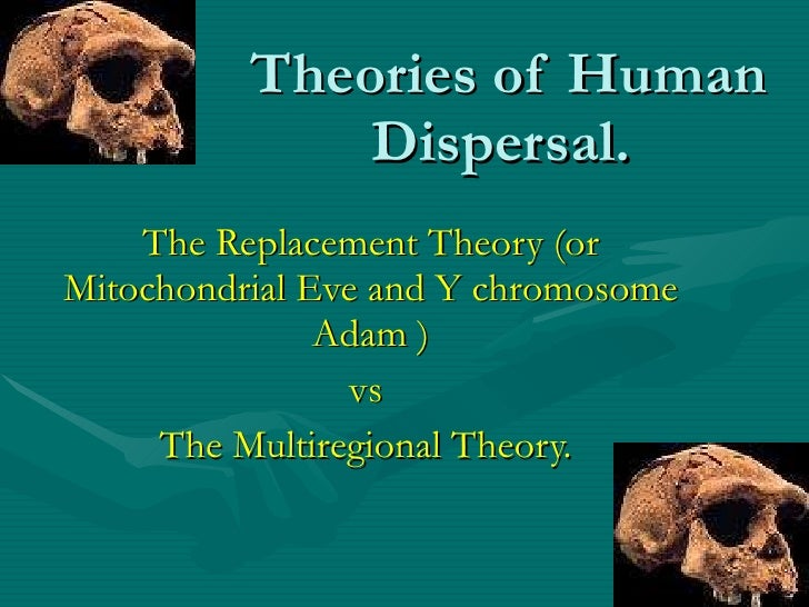 Theories of Human Dispersal.  The Replacement Theory (or Mitochondrial Eve and Y chromosome Adam ) vs  The Multiregional T...