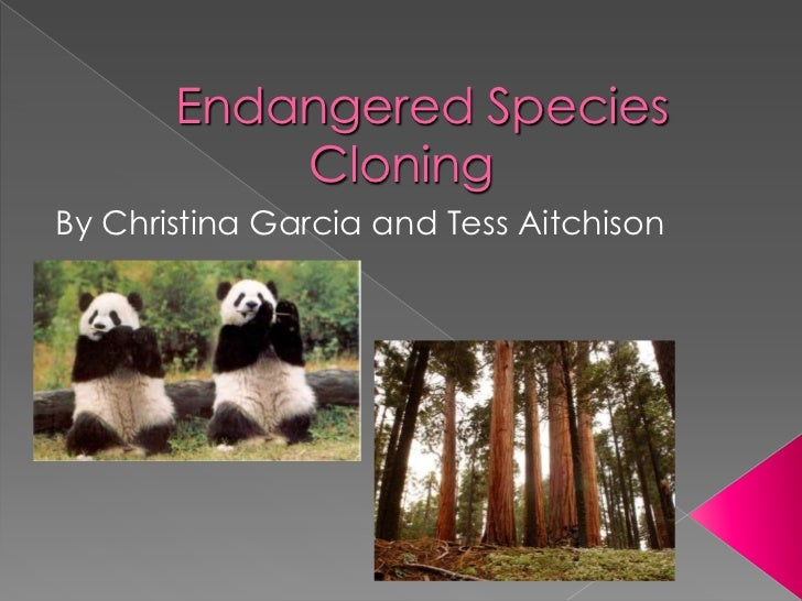 Endangered Species Cloning<br />By Christina Garcia and Tess Aitchison <br />