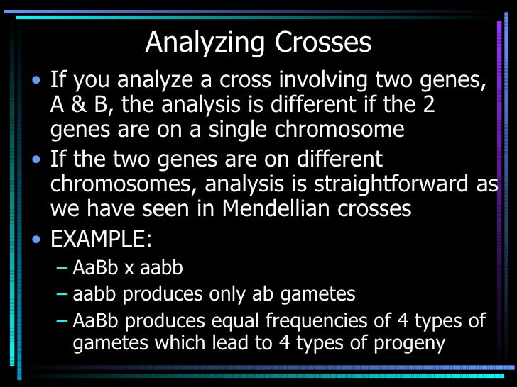 Analyzing Crosses <ul><li>If you analyze a cross involving two genes, A & B, the analysis is different if the 2 genes are ...