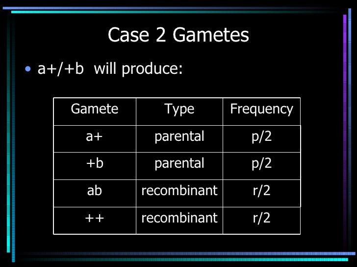 Case 2 Gametes <ul><li>a+/+b  will produce: </li></ul>r/2 recombinant ++ r/2 recombinant ab p/2 parental +b p/2 parental a...
