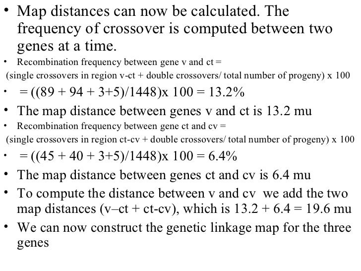Genetic linkage on distance between family, distance between god, distance between anatomy, distance between atoms, distance between nucleotides, distance between people, distance between cells,