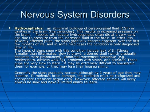Disorder of the nervous system  Major Nervous System Disorders