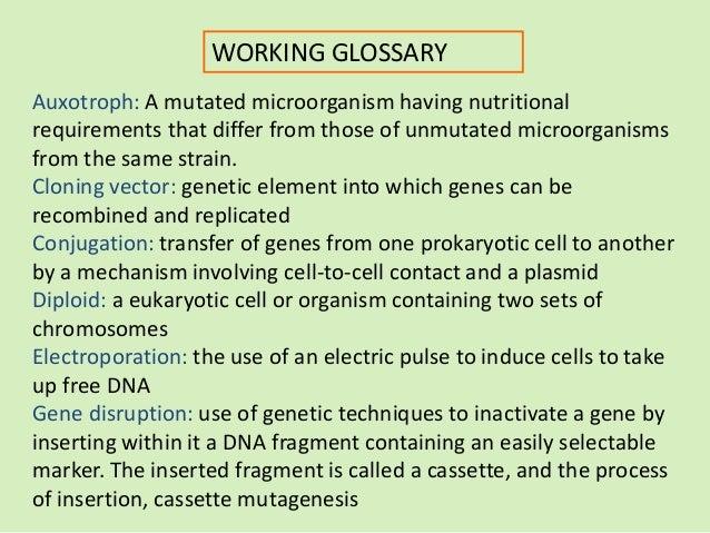 Genetic recombination Slide 3