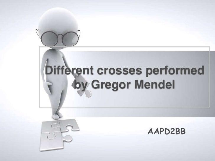 Different crosses performed      by Gregor Mendel                 AAPD2BB