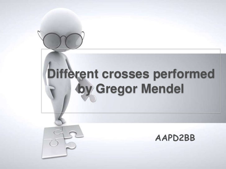 Different crosses performed      by Gregor Mendel                 AAPD2BB