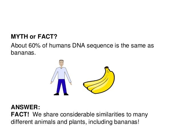 The Knowns And Unknowns Genetic Testing And Congenital