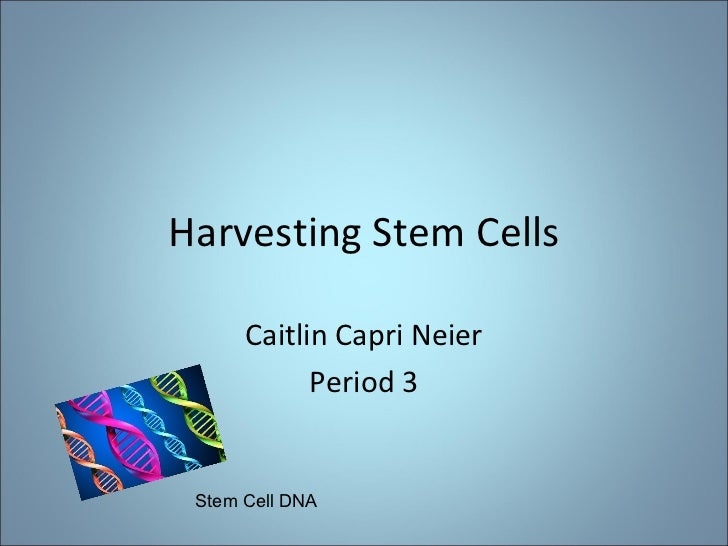 Harvesting Stem Cells Caitlin Capri Neier Period 3 Stem Cell DNA