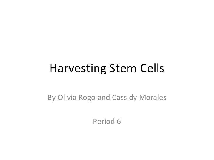 Harvesting Stem Cells By Olivia Rogo and Cassidy Morales Period 6