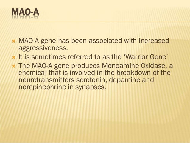 """the monoamine oxidase a gene essay In what year did james parkinson publish his """"essay on the shaking palsy"""" parkinson's."""