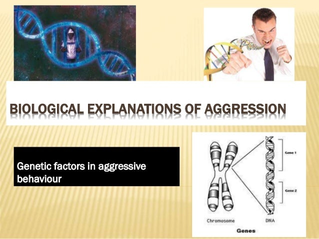 Genetics and aggression A2
