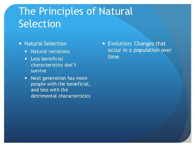 Discuss The Theory Of Natural Selection