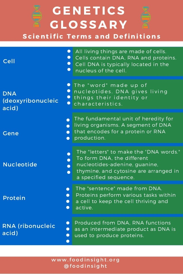 G E N E T I C S G L O S S A R Y S c i e n t i f i c T e r m s a n d D e f i n i t i o n s DNA (deoxyribonucleic acid) Gene...