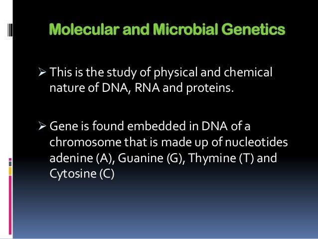 Genetics homework help