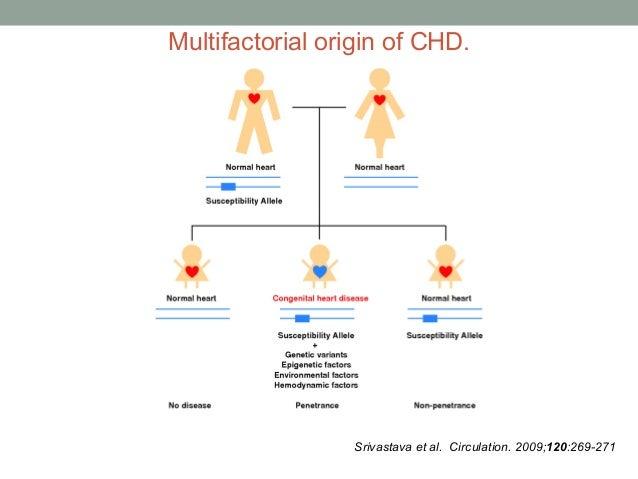 Multifactorial origin of CHD.  Srivastava et al. Circulation. 2009;120:269-271