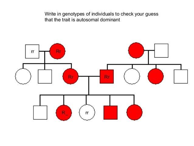 Genetics pedigree problems