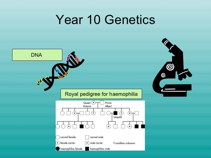 Year 10 Genetics DNA  Royal pedigree for haemophilia