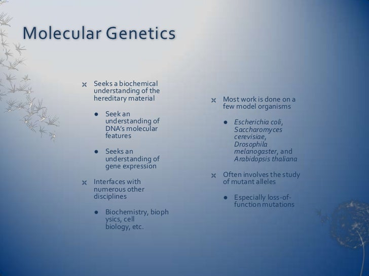 Population genetics involves the study of