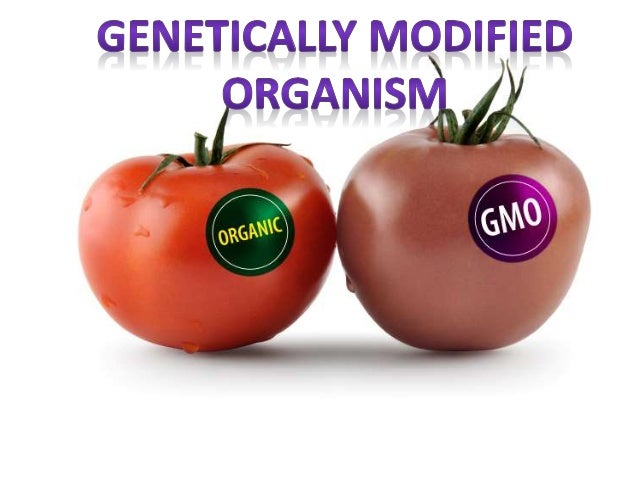 genetically modified organisms issues regarding labelling