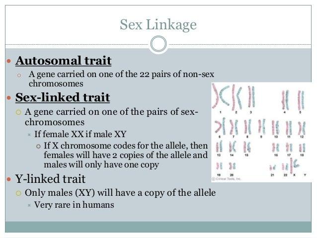Autosomal Vs Sex Chromosomes
