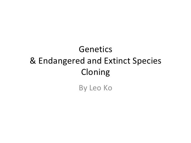 Genetics & Endangered and Extinct Species Cloning By Leo Ko