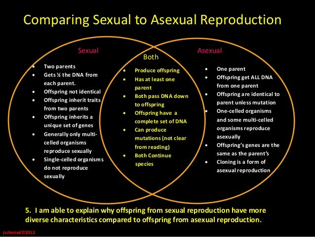Similarities between asexual and sexual reproduction in fungi