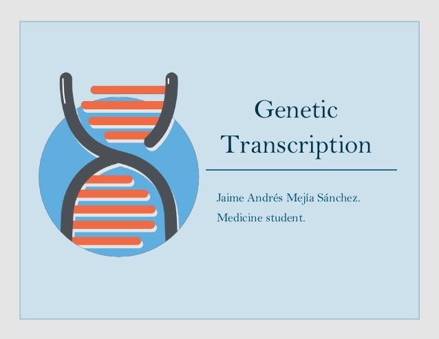 Genetic Transcription Jaime Andrés Mejía Sánchez. Medicine student.