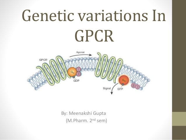 Genetic variations In GPCR By: Meenakshi Gupta (M.Pharm. 2nd sem)