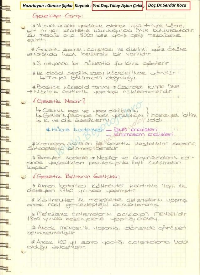 Genetik 1 ders notları