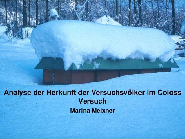 Analyse der Herkunft der Versuchsvölker im Coloss                     Versuch                  Marina Meixner
