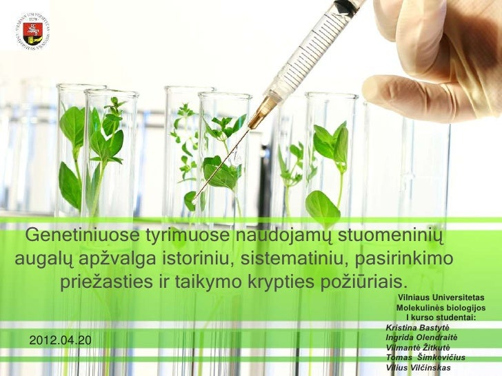 Genetiniuose tyrimuose naudojamų stuomeniniųaugalų apžvalga istoriniu, sistematiniu, pasirinkimo    priežasties ir taikymo...