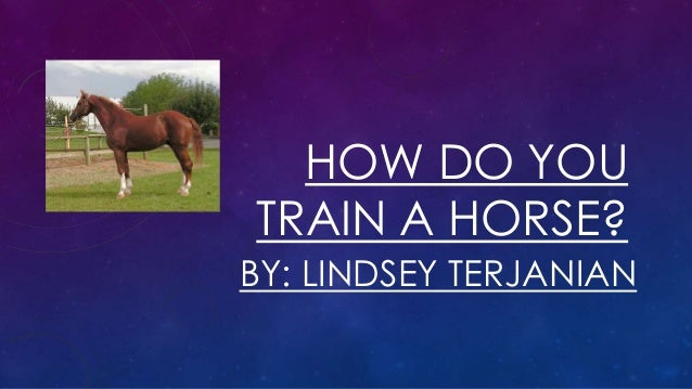 HOW DO YOU TRAIN A HORSE? BY: LINDSEY TERJANIAN