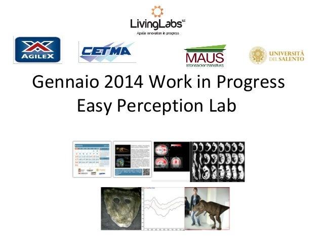Gennaio 2014 Work in Progress Easy Perception Lab