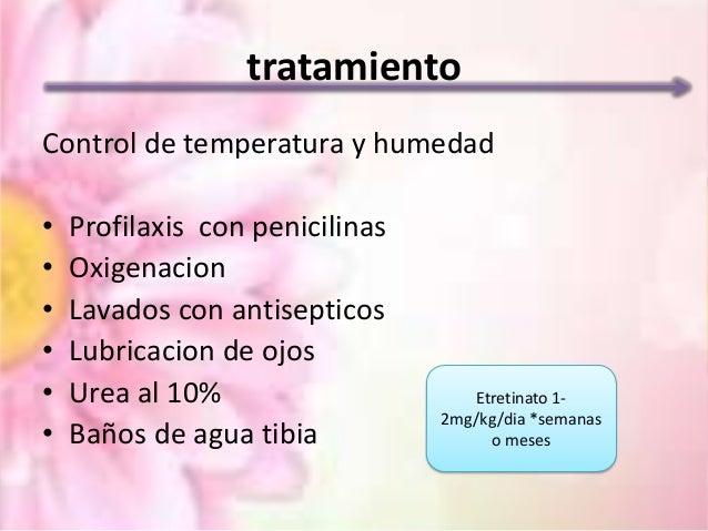 sulfatasa esteroidea funcion