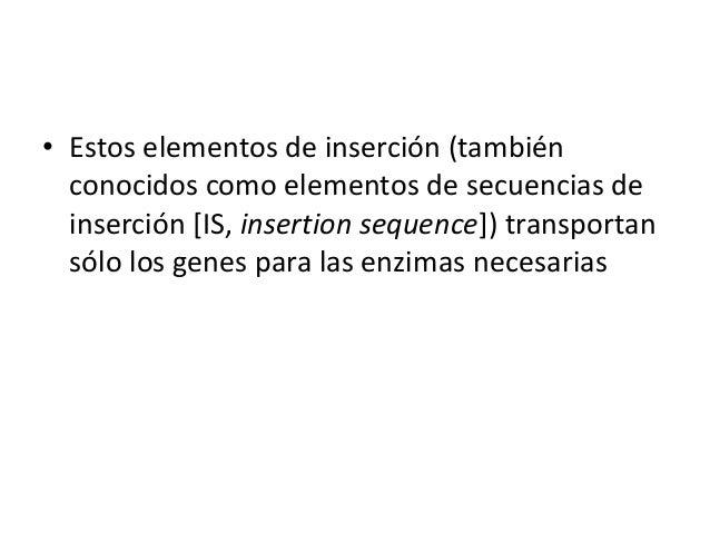 • Estos elementos de inserción (también conocidos como elementos de secuencias de inserción [IS, insertion sequence]) tran...