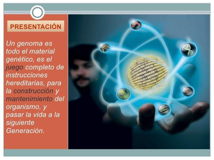 PRESENTACIÓN  <ul><li>Un genoma es todo el material genético, es el  juego  completo de instrucciones hereditarias, para l...
