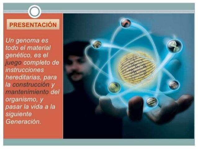 PRESENTAC| ÓN  Un genoma es todo e¡ material genético,  es el completo de instrucciones  hereditarias,  para Ia e y e ' e ...