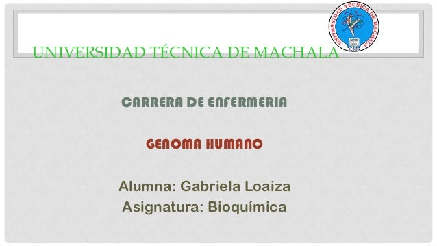 UNIVERSIDAD TÉCNICA DE MACHALA CARRERA DE ENFERMERIA GENOMA HUMANO Alumna: Gabriela Loaiza Asignatura: Bioquímica
