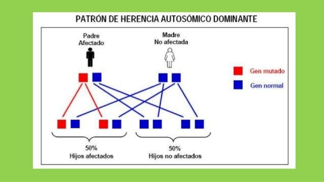 Herencia Poligenica Epub Download