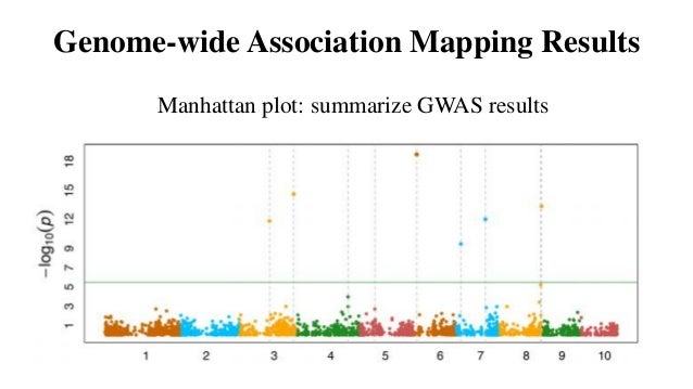 A guide to genome‐wide association analysis and post ...
