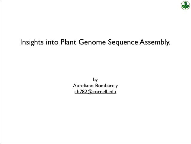 Insights into Plant Genome Sequence Assembly. by Aureliano Bombarely ab782@cornell.edu
