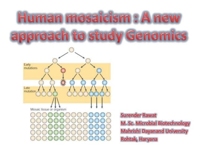 genetic mosaicism - photo #24