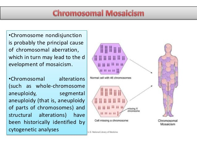 an analysis of mosaicism in down syndrome genetic disorder Mosaic down syndrome, or mosaicism, is a less common and potentially milder form of the disorder occurring in 2 percent to 4 percent of cases.