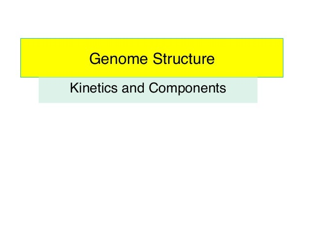 Genome Structure! Kinetics and Components!