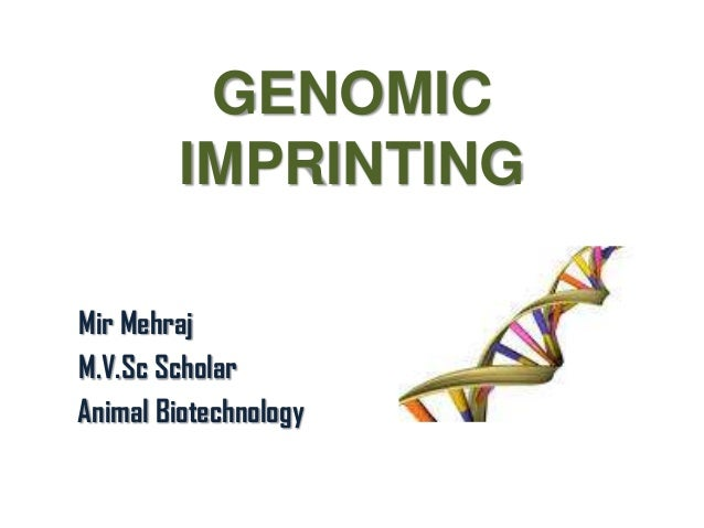 GENOMIC IMPRINTING Mir Mehraj M.V.Sc Scholar Animal Biotechnology