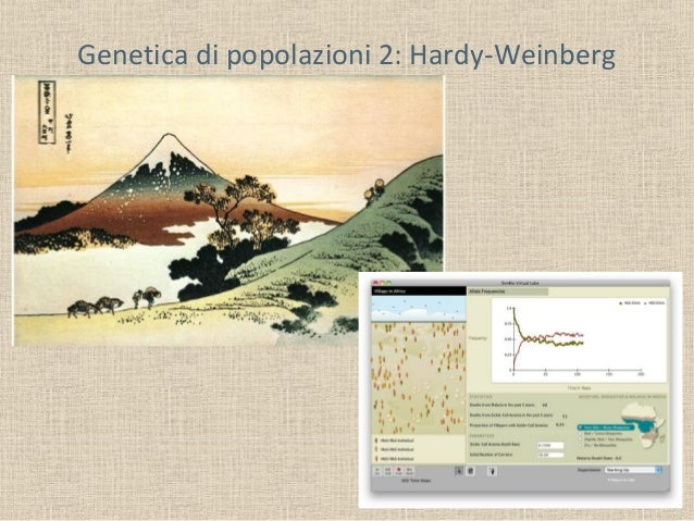 Genetica di popolazioni 2: Hardy-Weinberg