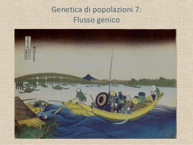Genetica di popolazioni 7: Flusso genico