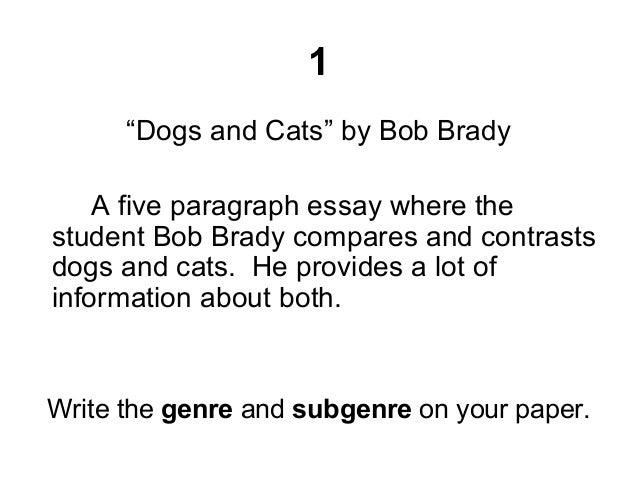 compare contrast dogs cats essay compare and contrast essay on pet dog or cat essay