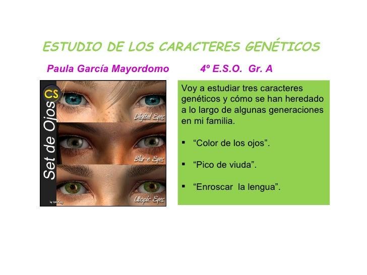 ESTUDIO DE LOS CARACTERES GENÉTICOS <ul><li>Voy a estudiar tres caracteres genéticos y cómo se han heredado a lo largo de ...