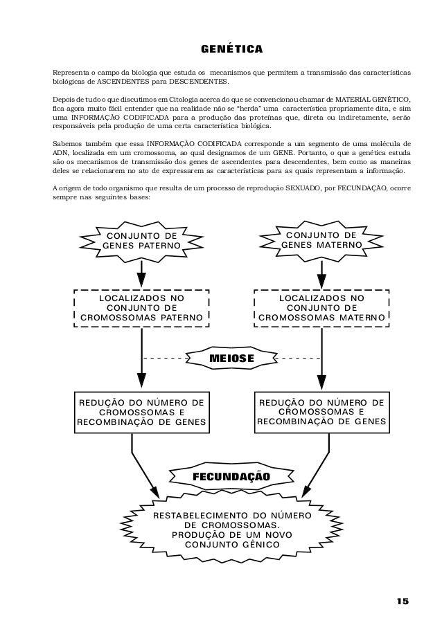 GENÉTICARepresenta o campo da biologia que estuda os mecanismos que permitem a transmissão das característicasbiológicas d...