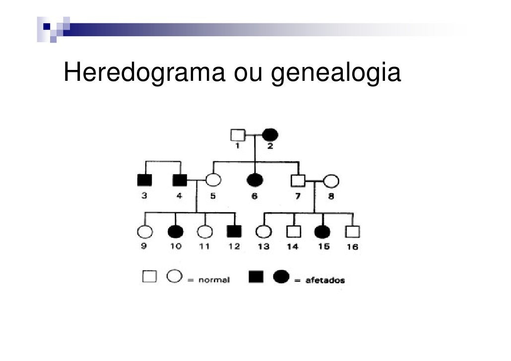 Heredograma ou genealogia